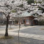 Kurama-dera 鞍馬寺 thumbnail