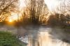 Geese on Kromme Rijn river (Erik van Ossenbruggen) Tags: sunrise zonsopgang zonsopkomst morning ochtend geese goose ganzen gans mist nevel krommerijn river rivier jaagpad utrecht nederland netherlands nikon d750 70200mm