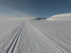 The final hill before 345 (GeirB,) Tags: varanger vadsø vadsoe finnmark friskifinnmark fatbike fun østfinnmark outdoor winterwonderland gekkobikes uteliv liveterbestute training snow norway nordnorge northernnorway 70north arctic swix sweethelmet vintersykling april gopro varangervidda moor 345 26x48 garmin sykkeltur sykkel bike bikelife explore