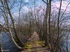 Spring is coming (0068) (Stefan Beckhusen) Tags: springseason sky sunny sun tree outdoor vegetation ecosystem season seasonal growth path pathway footpath lakes pond water vanishingpoint moss narrow small