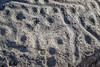 Dinosaur Provincial Park, Alberta (aud.watson) Tags: alberta canada iddesleigh albertaprairie newellcounty pallierstriangle dinosaurprovincialpark reddeerriver worldheritagesite sedimentaryrock aridregion prairie grassland badlands fossilbeds sandstone mudstone rock