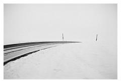 Winter road (cardijo) Tags: canon f1 ilford hp5 rodinal winter snow analog film blackandwhite