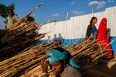 Harar, Ethiopia by f.d. walker - ShooterFiles.com Instagram