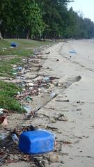 Trash on the high shore, Changi (wildsingapore) Tags: changi carpark7 threats litter aquaculture island singapore marine coastal intertidal shore seashore marinelife nature wildlife underwater wildsingapore