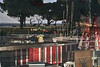 (thierrylothon) Tags: aquitaine gironde andernos leica leicar90elmarit sony sonya7riii colorgie publication flickr fluxapple phaseone captureonepro c1pro closeup lumière andernoslesbains nouvelleaquitaine france fr