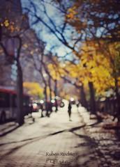 Nobody else will be there (Mister Blur) Tags: new york city stateofmind autumn fall 5th avenue blur bokeh forlife nobody else will be there thenational desenfoque snapseed nikon d7100 35mm f18 rubén rodrigo fotografía