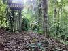 """""""Doors"""" -  Tarapoto magic hidden place (Boompacks) Tags: door magic amazonian"""