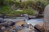 Aguas Difusas (Tato Avila) Tags: colombia colores cálido boyacá monguí aguas naturaleza nikon aguadeseda piedras
