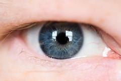 (Stacey Conrad) Tags: d7500 macro nikon eye
