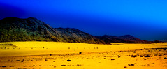 Colors of the Namib (Beppe Rijs) Tags: natur namibia afrika africa desert wüste landscape landschaft rock fels berge mountain color farbe abstrakt abstract blue blau yellow gelb gras grass nationalpark nature np namib