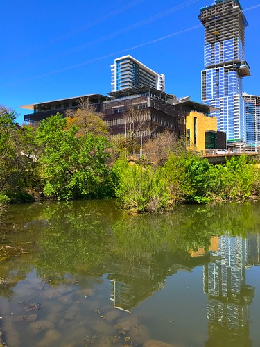 Austin Central Library in the Spring