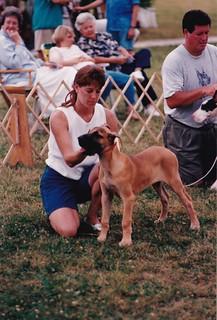 Illini Great Dane match 1995