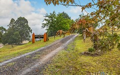 724 Yankees Gap Road, Bemboka NSW