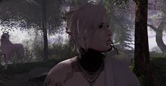 Thinking of Unicorns (Fraz_Gloom) Tags: secondlife second life photography fantasy elven sl