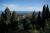 All' Ombra del Verde (f.pironti1999) Tags: ombre shadow foresta erba green sky rometta albero alberi cielo paesaggio campo landskape