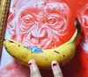 (Brynhild E Winther) Tags: brynhildwinther animal art animism ape drawing detail teikning banana visualart red