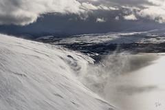 Blowing in the wind (Azulada_) Tags: norway tromso snow wind vent neu landscape paissatge fred cold frio nieve paisaje viento noruega