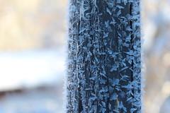 Steyrling - Austria (Been Around) Tags: steyrling gemeindeklausanderpyhrnbahn pyhrnprielregion pyhrnpriel europe eu europa expressyourselfaward europeanunion alpen alps beenaround österreich onlyyourbestshots oberösterreich oö worldtrekker travellers thisphotorocks upperaustria winter schnee snow hiver jänner january 2016