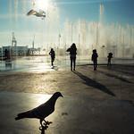 Malecón thumbnail
