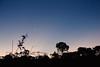 I am the sky (papilionoidea_) Tags: crepusculo ceu sky moon lua poetry beauty brazil