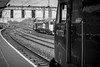 (Charlie Little) Tags: carlisle cumbria cumbrianhoovers trains station railways nikon d7200 blackandwhite bw citadel locomotive class50 class47