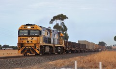NR1 and NR86 lead PM4 steel train a section behind PM9 at Dooen (bukk05) Tags: nr1 railpage:class=37 railpage:loco=nr1 rpaunrclass rpaunrclassnr1 nr86 nrclass nr wimmera westernstandardgaugeline wagons explore export engine railway railroad railpage rp3 rail railwaystation railwaystations ruralcityofhorsham train tracks tamron tamron16300 trains photograph photo pn pacificnational pm4 loco locomotive horsepower hp ge ge7fdl16 flickr freight diesel station standardgauge sg australia artc autumn 2018 steel canon60d canon cv409i container victoria vr victorianrailway vline victorianrailways nationalrail mainline dooen