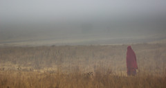 Massai's walk in the morning fog (Beppe Rijs) Tags: africa afrka tansania tanzania afrika crater krater kraterrand ngorongoronp np ngorongoro rim maasai massai mist nebel gras