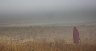 Massai's walk in the morning fog