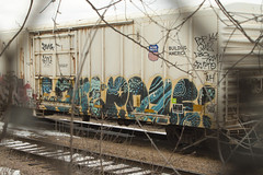 Lowe P.que (Psychedelic Wardad) Tags: freight graffiti gtb weedheads wh sws a2m dirty30 d30 popquiz pque lowe