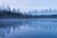 surreal reflection (zora_schaf) Tags: dreifachbelichtung multiexposure kirchsee reflection spiegelung langzeitbelichtung blau blue bleu see lake surreal zoraschaf