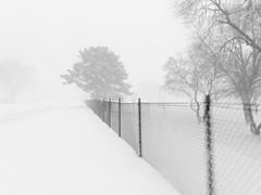 Blizzardy Walk (3 of 5) (Thiophene_Guy) Tags: thiopheneguy originalworks olympusxz1 xz1 negativespace minimalism snow camerawrappedinbreadbagtapedclosedarounduvfilter blur slowshutterblur winter snowfall