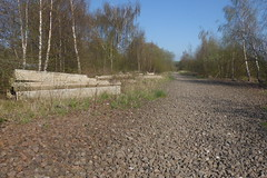 Former railway station site at Catcliffe, Sheffield  (former SDR route)   April 2018 (dave_attrill) Tags: sleepers ballast april 2018 catcliffe sheffield railway line disused trackbed remains goods sdr sheffielddistrictrailway southyorkshire