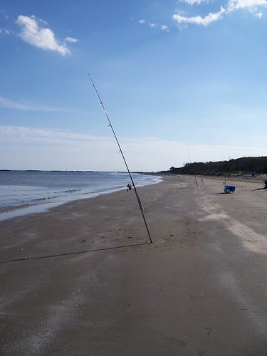 Fishing poles on the beach