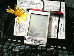 An Unlikely Snack (curiousyellow) Tags: unretouched cameraphone unlikelysnack moleskine keyboard pda flower geekchic whimsy topv111 exflickrcuriousyellowjonathan topv333