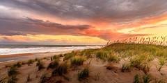 Cape Hatteras Beach (justinherrold1) Tags: nc northcarolina beach sunset orange pastel sand water ocean waves seashore sea shore dunes