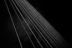 Lines of Ada (igo.rs) Tags: architecture belgrade bridge black white construction ada travel structure abstract