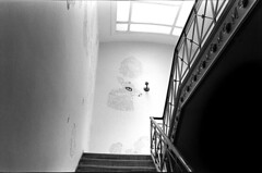 missouri (chuckp) Tags: blackandwhite ink graffiti interiors slow mo walls jeffersoncity leicam2 spsalon scanfromprint 10best oldsilver marciashowedmethis asachuckp