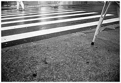 Chuva... (Paula Marina) Tags: street bw film stripes chuva pb rua filme muleta lapa listras faixadepedestre mercadomunicipaldalapa paulamarina