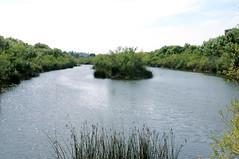 San Diego River