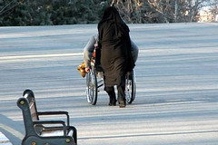 Mellat park (Beshef) Tags: park people iran wheelchair tehran      mellat