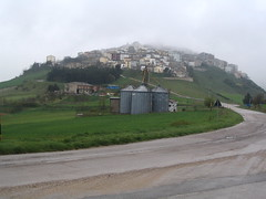 View of Forenza in rain (ted23) Tags: forenza