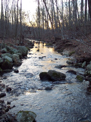 Paint Branch stream