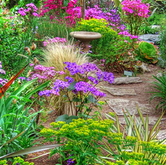 Garden at the Church of the Wayfarer. (linda yvonne) Tags: flowers colors garden saturated hdr likeapainting photomatix i500 interestingness297 ixp imagekind abigfave hdrmosaic lindayvonne