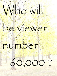 Who will be viewer number 60,000?