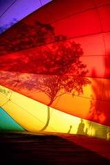 From inside a rainbow... (jerikojosh) Tags: shadow abstract tree silhouette festival digital sunrise canon rainbow saturated colorful spectrum branches balloon surreal eerie hotairballoon 5d glowing inside juxtaposition ballooning within skyparade abigfave jerikojosh makeonesday