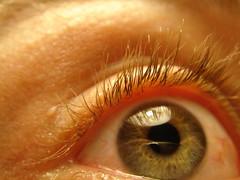 DSC01706 (macronix) Tags: eye me auge nopostmanipulation