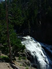 Yellowstone Park (umpamucha) Tags: yellowstonepark