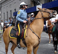 NYPD Horse Parade (Jimmy Legs) Tags: horse newyork streets cops worldtradecenter police mounted wtc gothamist mounties