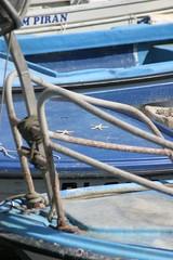 Starfish (invisible A) Tags: slovenia piran slo