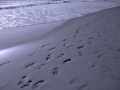CaMiNoS CRuZaDoS (RoOoOo!!!) Tags: 510fav mar playa arena caminos olas pisadas huellas 100vistas abigfave